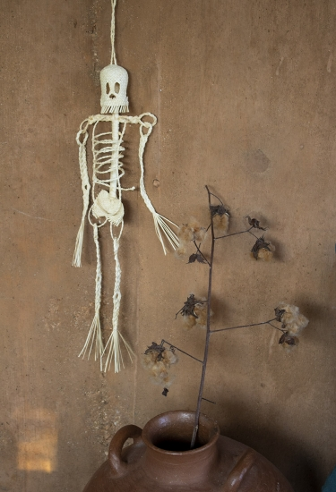 Esqueleto de palma